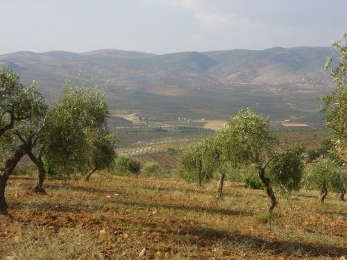 Çiyayayê Kurmênc - Navçeya Mabetan